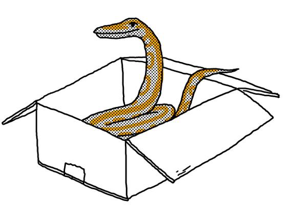 Python Packaging at PayPal